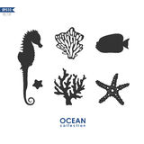 Vecor set of marine creatures. Set of sea creatures isolated on white, vector silhouettes of seahorse, starfish, sea plants and corals Stock Photography