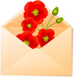 Vecot envelope with red flowers inside Royalty Free Stock Image