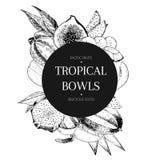 Vecotr hand drawn smoothie bowls poster. Exotic engraved fruits. Banana, mango, papaya, pitaya, acai, lycgee, fig. Royalty Free Stock Photo