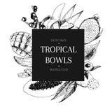Vecotr hand drawn smoothie bowls poster. Exotic engraved fruits. Banana, mango, papaya, pitaya, acai, lycgee, fig. . Stock Photo