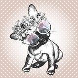 Vecotrportret van hond, die de bloemenkroon en de zonnebril dragen Frans buldogras stock illustratie