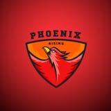 Vecteur abstrait en hausse Logo Template de Phoenix Illustration d'oiseau du feu de vol dans un bouclier illustration de vecteur