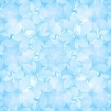 Vecteur abstrait floral Photo libre de droits