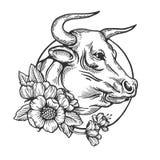 Vecteur animal de gravure de Taureau Photos libres de droits