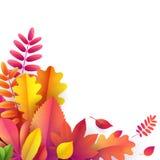 Vecteur Autumn Banner Bouquet des feuilles d'automne tombées sur le fond blanc vide avec l'espace vide Illustration de Vecteur