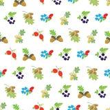 Vecteur Autumn Berries Nuts Seamless coloré Image stock