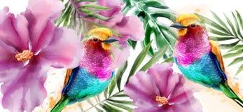 Vecteur coloré d'aquarelle d'oiseaux et de fleurs Milieux tropicaux de carte illustration de vecteur