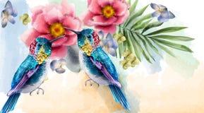 Vecteur coloré d'aquarelle d'oiseaux et de fleurs de ronflement Milieux tropicaux de carte illustration stock