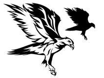 Vecteur d'aigle Photographie stock