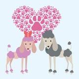Vecteur d'animal familier Image stock