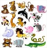 Vecteur d'animaux de dessin animé Photos stock