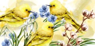 Vecteur d'aquarelle de carte de ressort avec les oiseaux et les fleurs mignons Petits oiseaux d'or Les taches de couleur de cru é illustration stock