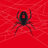 Vecteur d'araignée de veuve noire Photos libres de droits