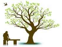 Vecteur d'arbre photo stock