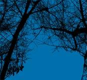 vecteur d'arbres de ciel bleu Photographie stock