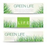 Vecteur d'herbe de pré abstraite de bannières horizontales d'eco avec l'endroit pour la société Photographie stock