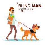 Vecteur d'homme aveugle Person With Pet Dog Companion Marche sans visibilité de chien de guide de Person In Dark Glasses And cart Image stock