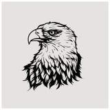 vecteur d'illustration de l'aigle principal Images libres de droits
