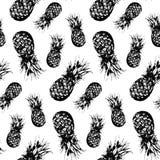 Vecteur d'isolement tiré par la main de fruit monochrome d'ananas d'aquarelle Image libre de droits
