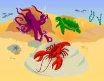 Vecteur d'océan de langoustine de tortue de poulpe Photographie stock