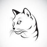 Vecteur d'une conception de visage de chat sur le fond blanc Images libres de droits