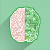 Vecteur de Brain Circuit Photographie stock