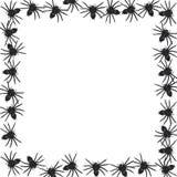 Vecteur de cadre d'araignée Photographie stock