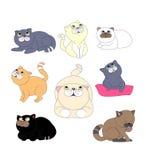 Vecteur de chat Illustration Stock