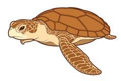 Vecteur de couleur de tortue de mer illustration de vecteur