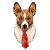 Vecteur de croquis de tête de Basenji de race de chien Illustration de Vecteur