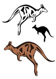 Vecteur de kangourou Images libres de droits