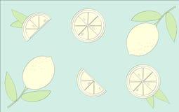 Vecteur de Limon Photos stock