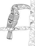 Vecteur de livre de coloriage de toucan pour des adultes Photos stock