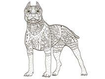 Vecteur de livre de Pit Bull Terrier Coloring d'Américain pour des adultes Photo stock