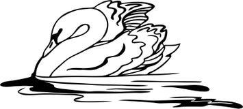 Vecteur de natation de cygne Photos libres de droits
