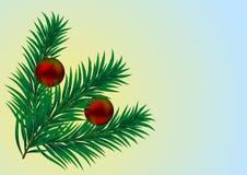 vecteur de Noël de branchement Image libre de droits