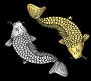 Vecteur de poissons de koii d'or et d'argent Image libre de droits