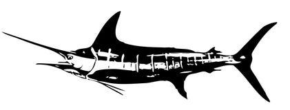 Vecteur de poissons de marlin rayé Images stock