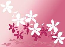 vecteur de rose de fleur de conception Image libre de droits