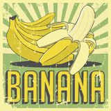 Vecteur de Signage de vintage de banane rétro Photo stock