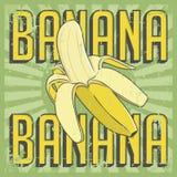 Vecteur de Signage de vintage de banane rétro Photographie stock libre de droits