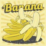 Vecteur de Signage de vintage de banane rétro Images libres de droits