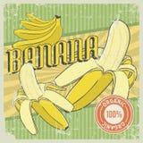 Vecteur de Signage de vintage de banane rétro Photos libres de droits