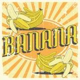 Vecteur de Signage de vintage de banane rétro Photos stock