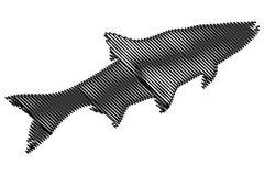 Vecteur de silhouette d'asp Photos libres de droits