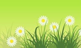 Vecteur de thème de ressort de fond de fleur plat Photographie stock