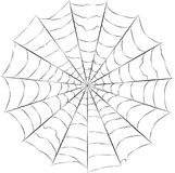 Vecteur de toile d'araignée Photographie stock