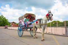 vecteur de trame d'illustration de cheval de chariot images stock