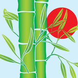 vecteur en bambou Image stock