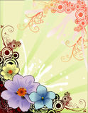 Vecteur floral Photos stock